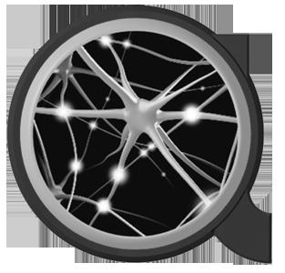 https://netz-werk.co/wp-content/uploads/2017/10/accompany-logo_SW_300.png